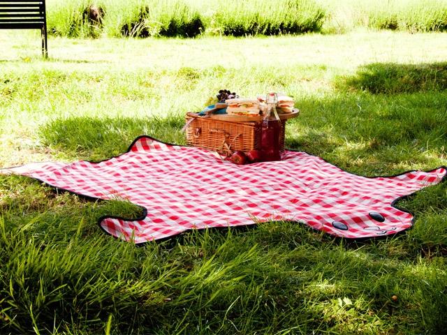 Коврик для пикника Bearskin красный