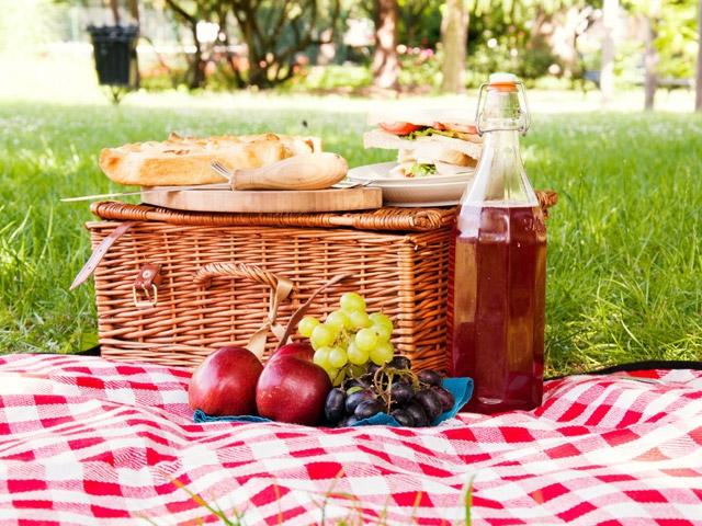 Коврик Bearskin красный для пикника