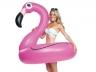 Круг Фламинго