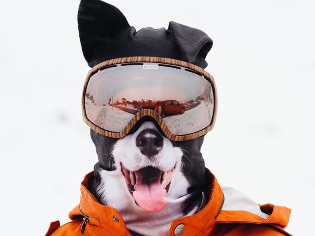 Маска Collie с очками