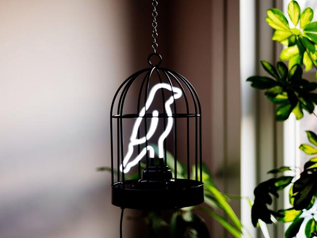 Светильник Neon Bird подвес