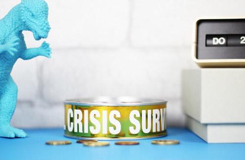копилка кризис finansial crisis survival kit